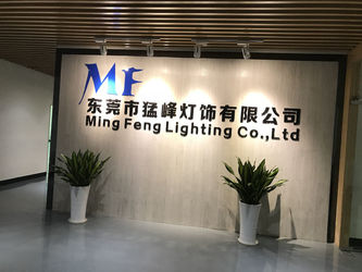 China Ming Feng Lighting Co.,Ltd. Perfil da companhia